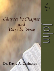 Chapter by Chapter- John -Gospels copy