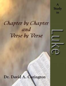Chapter by Chapter- Luke -Gospels copy