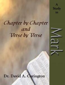 Chapter by Chapter- Mark-Gospels copy