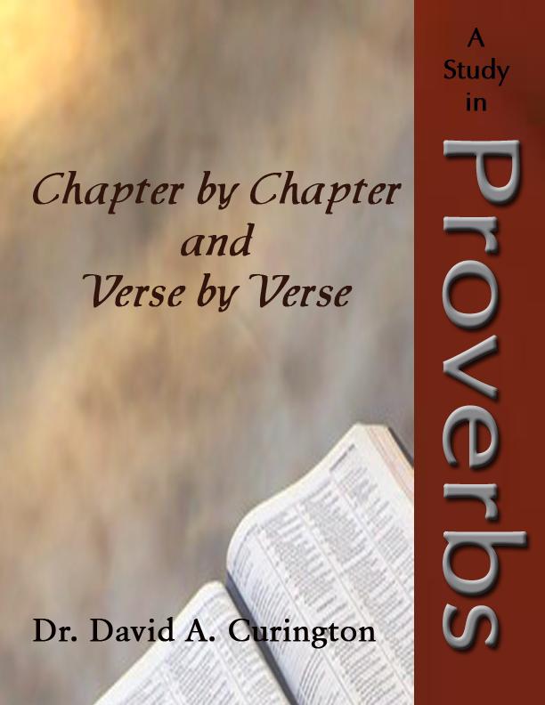 book of daniel bible study guide