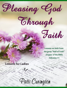 Pleasing God through Faith 2 copy