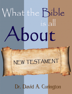What the Bible is About NT cover copy