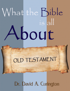 What the Bible is About OT cover Dr